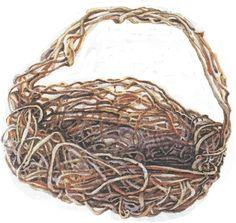 Basket out of Vines