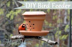 DIY Bird Feeder From A Flower Pot