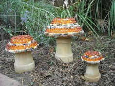 Mosaic Mushrooms