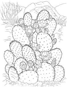 Prickly Pear Cactus Coloring page