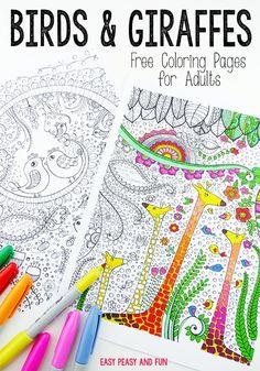 Birds and Giraffes Coloring Pages