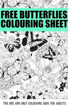 Gorgeous Free Butterfly Colouring Pages