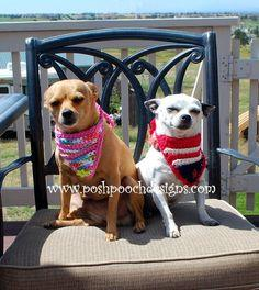 Dog Flag Bandanna Crochet Pattern