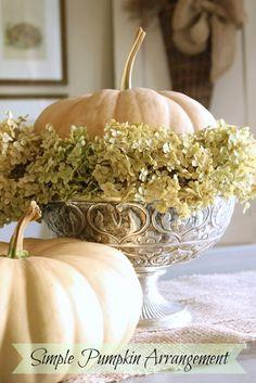 Simple Pumpkin and Hydrangea