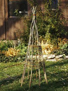 Building a Bentwood Plant Tepee