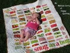 Snug as a Bug Baby Quilt