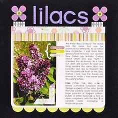 Garden Scrapbook Layout Ideas